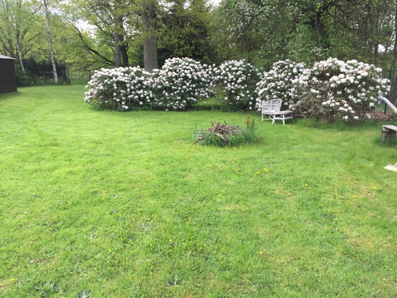 zahrada 2.JPG